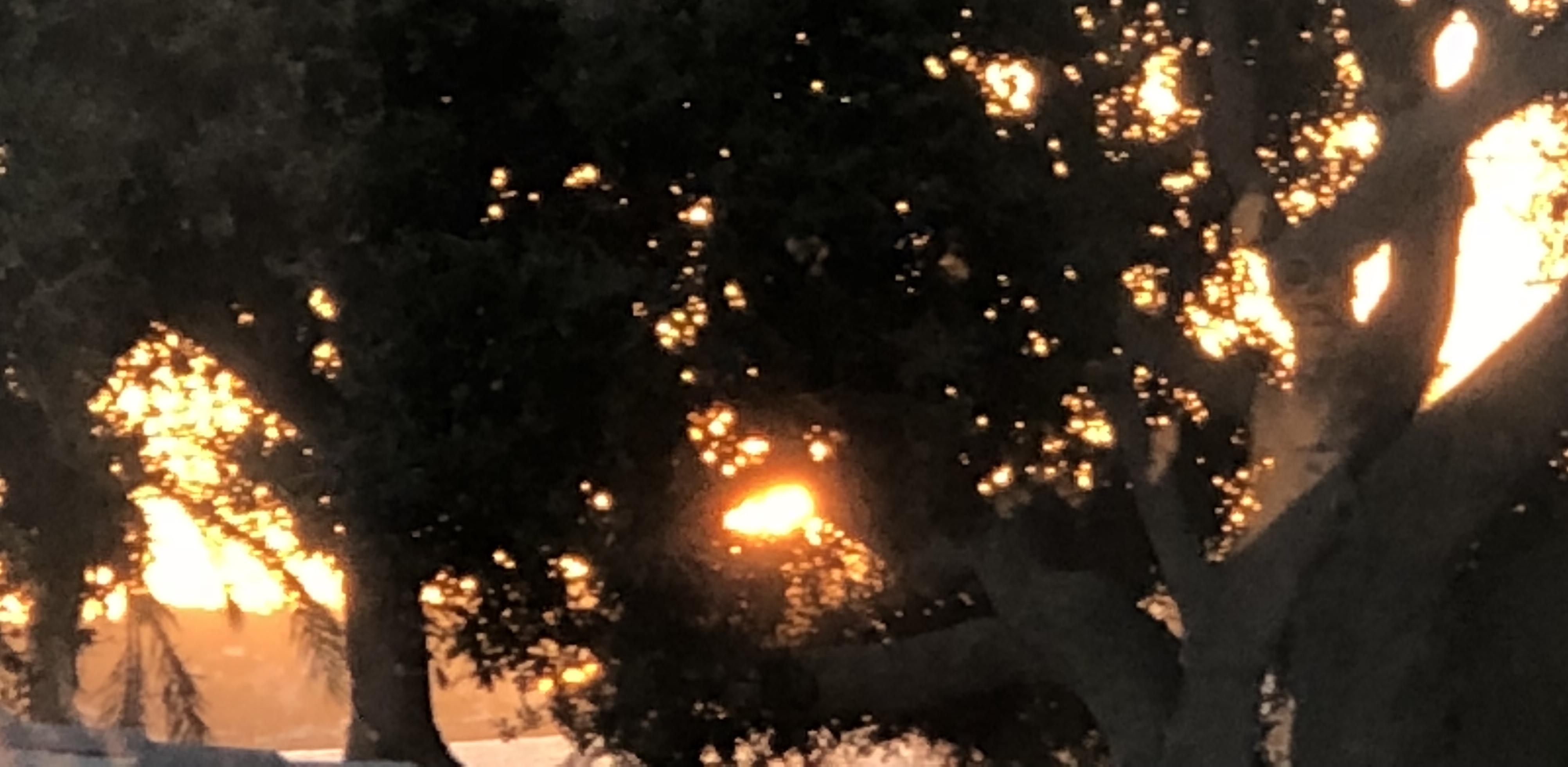 sunrise 10-22-18