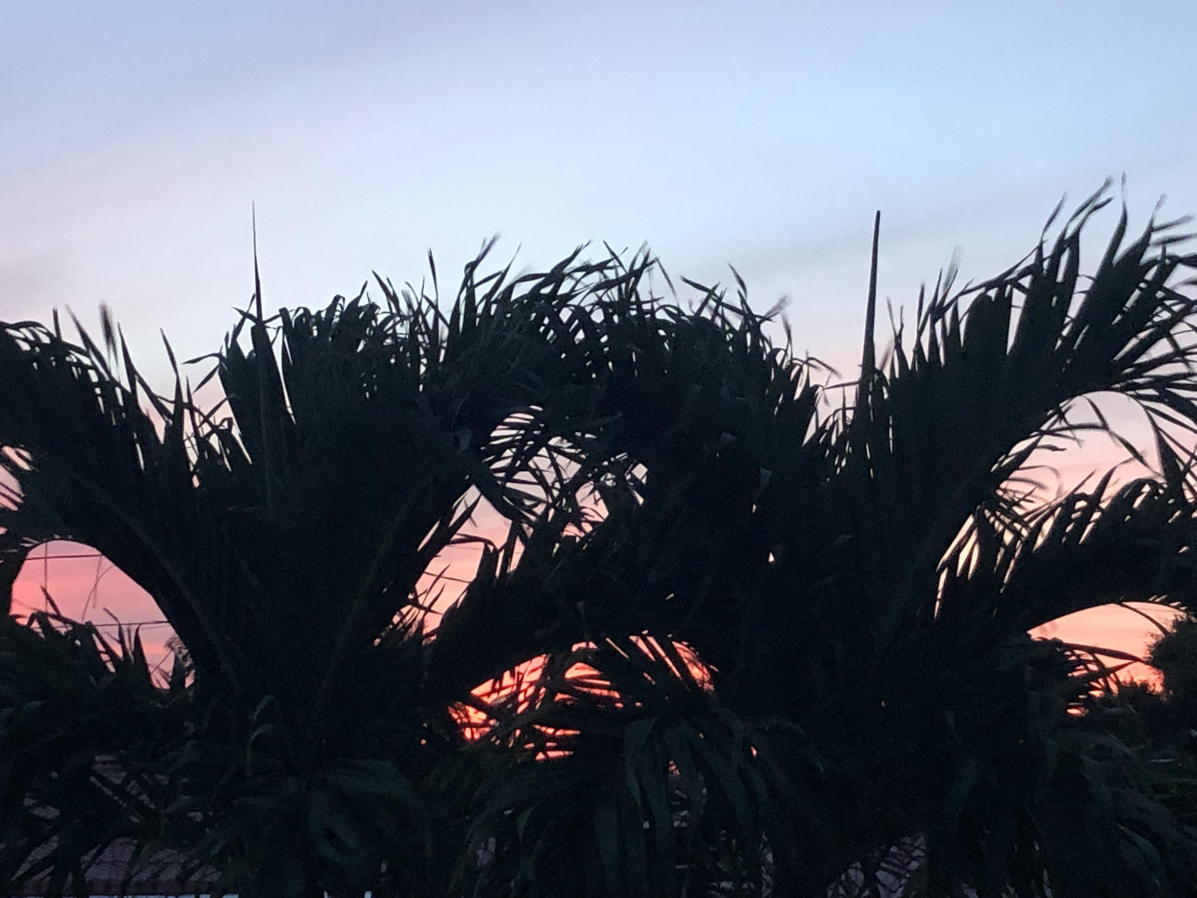 sunrise 9-5-19