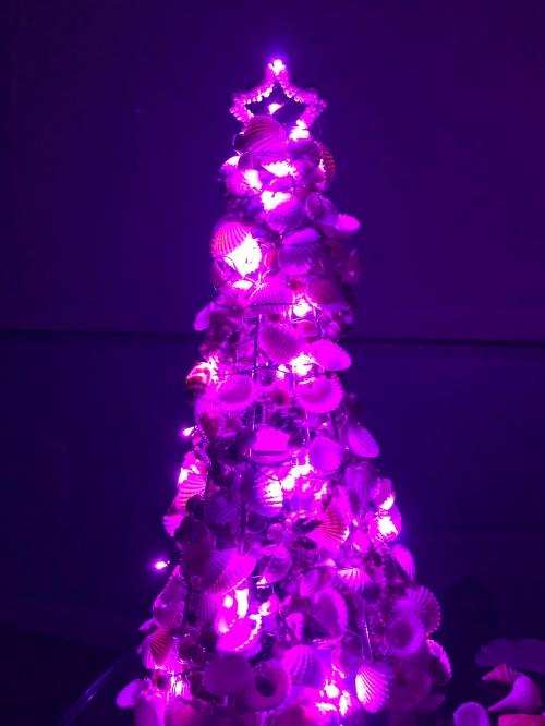 shell Christ tree